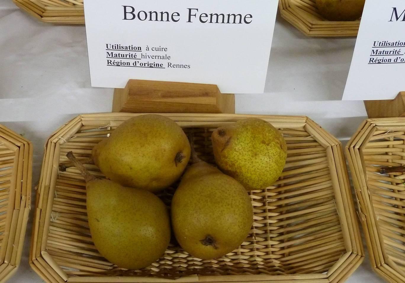 Quelques poires cuire association les mordus de la pomme - Peut on congeler des poires ...